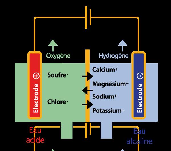 Schema-electrolyse-ionsateur-eau-alcaline[1]