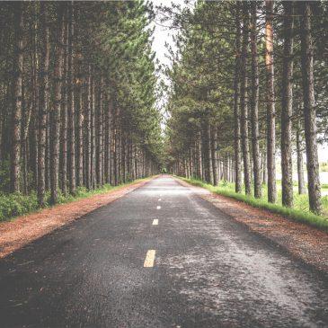 Conduire sa vie en préservant au mieux son équilibre physique, psychique et sa santé.
