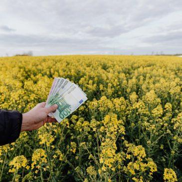 Le vrai coût du modèle agro-industriel